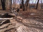 Sandy trail, MN River Bottoms