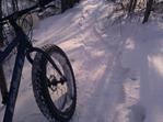 Haul Road trail, Yawkey Unit