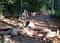 Mountain biking technical challenges at Theodore Wirth Park