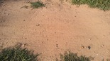 loose sand and gravel on the Lexington pump track