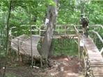 MTU Technical Trail Ride - dorkscrew