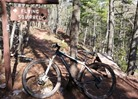 Flying Squirrel trail at Copper Harbor