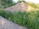 Soil in the Fargaze dirt mound
