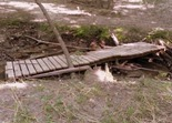 flood-damaged bridge, MN River Bottoms