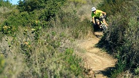 Brian Lopes video