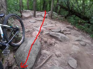 Leb rock garden alternative line - finish