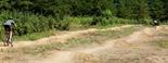 Left side: 21 rollers,  Upper Beginner Loop, Lebanon Hills MTB Park