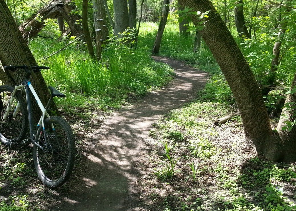 Beginnner MTB trail closer to trees
