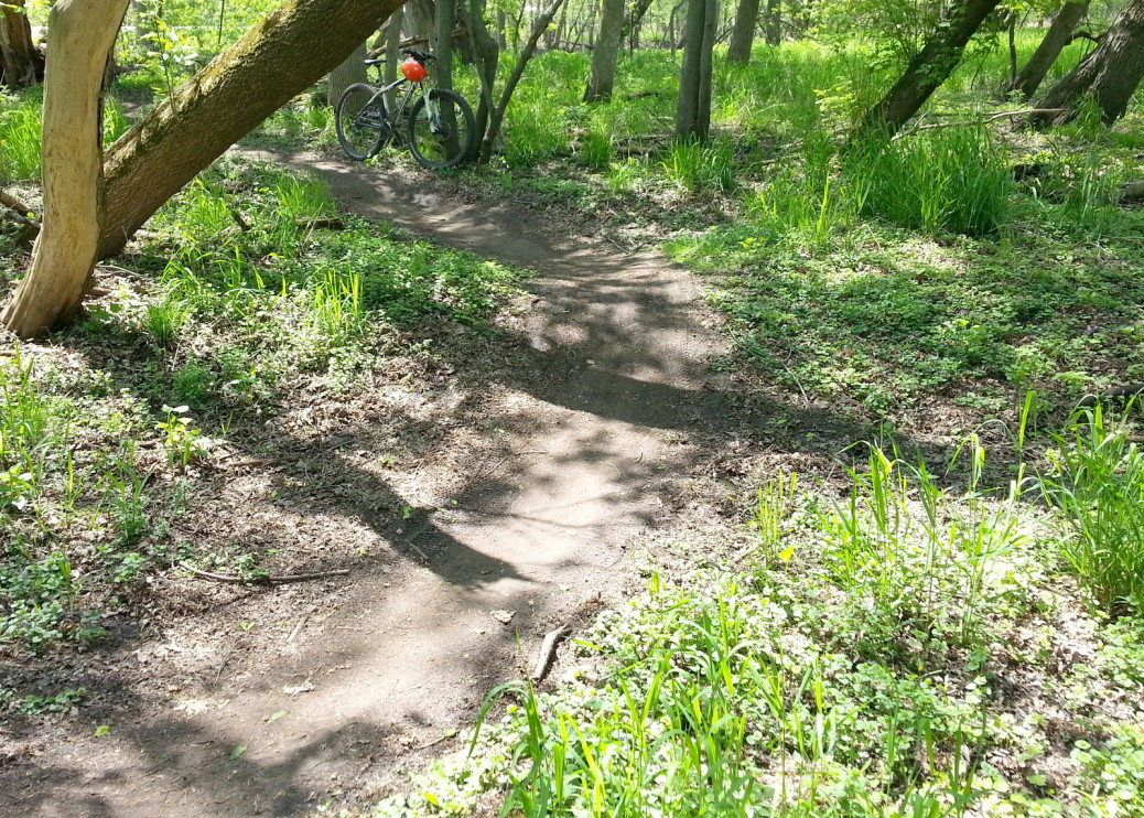 MTB trail with a wide turn, small dips, slightly irregular surface