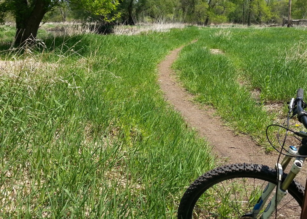 Narrow flat MTB singletrack trail