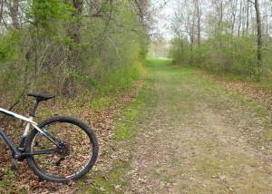 flat grass/dirt cross-country ski trail